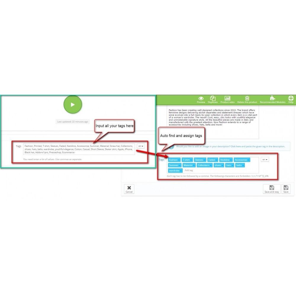 module - SEO (Indicizzazione naturale) - SEO Auto Tags - 1