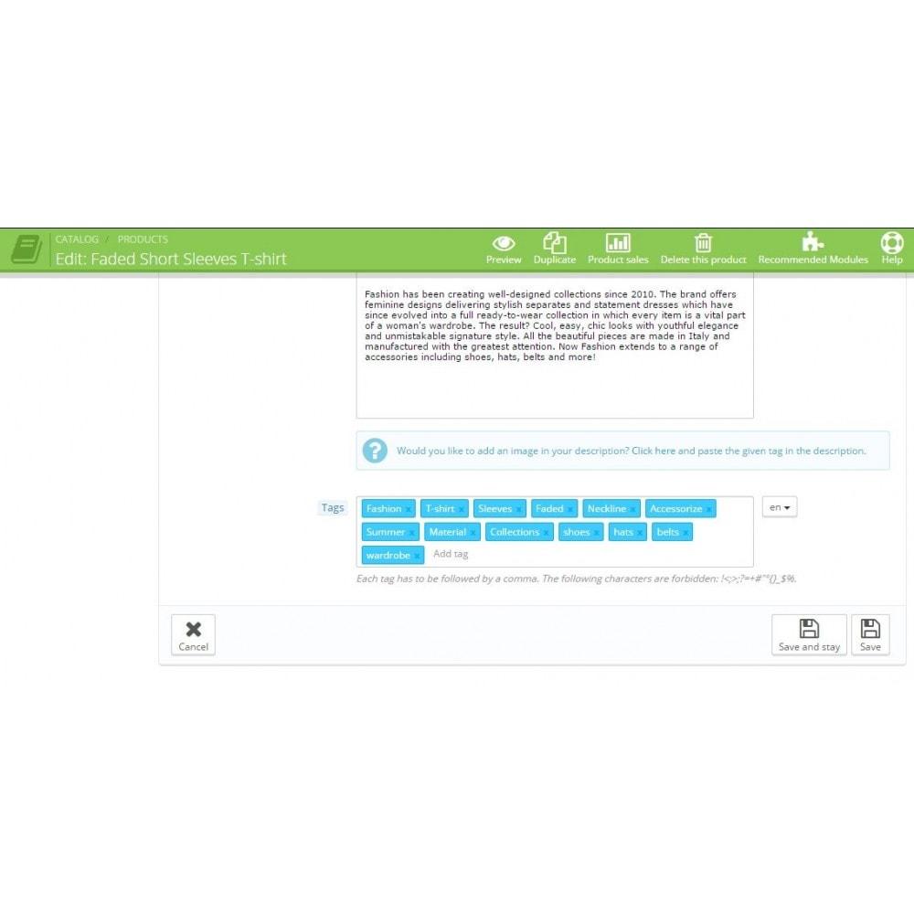 module - SEO (Indicizzazione naturale) - SEO Auto Tags - 4