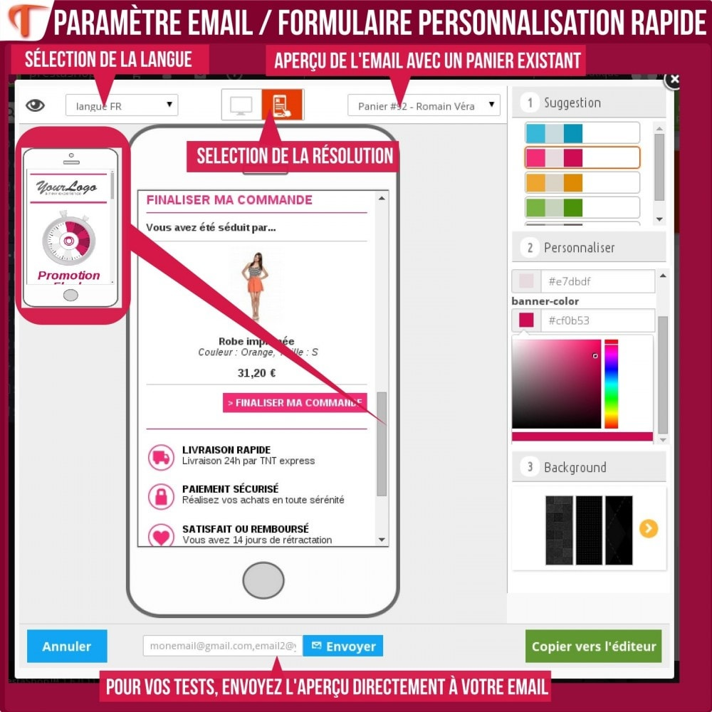 module - Remarketing & Paniers Abandonnés - Smart Cart Reminder / Relance Panier Intelligent - 19