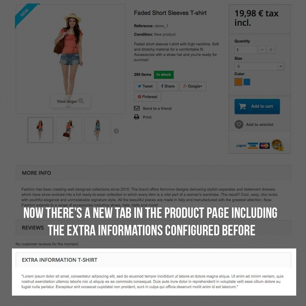 module - Additional Information & Product Tab - Product page extra information tab - 7