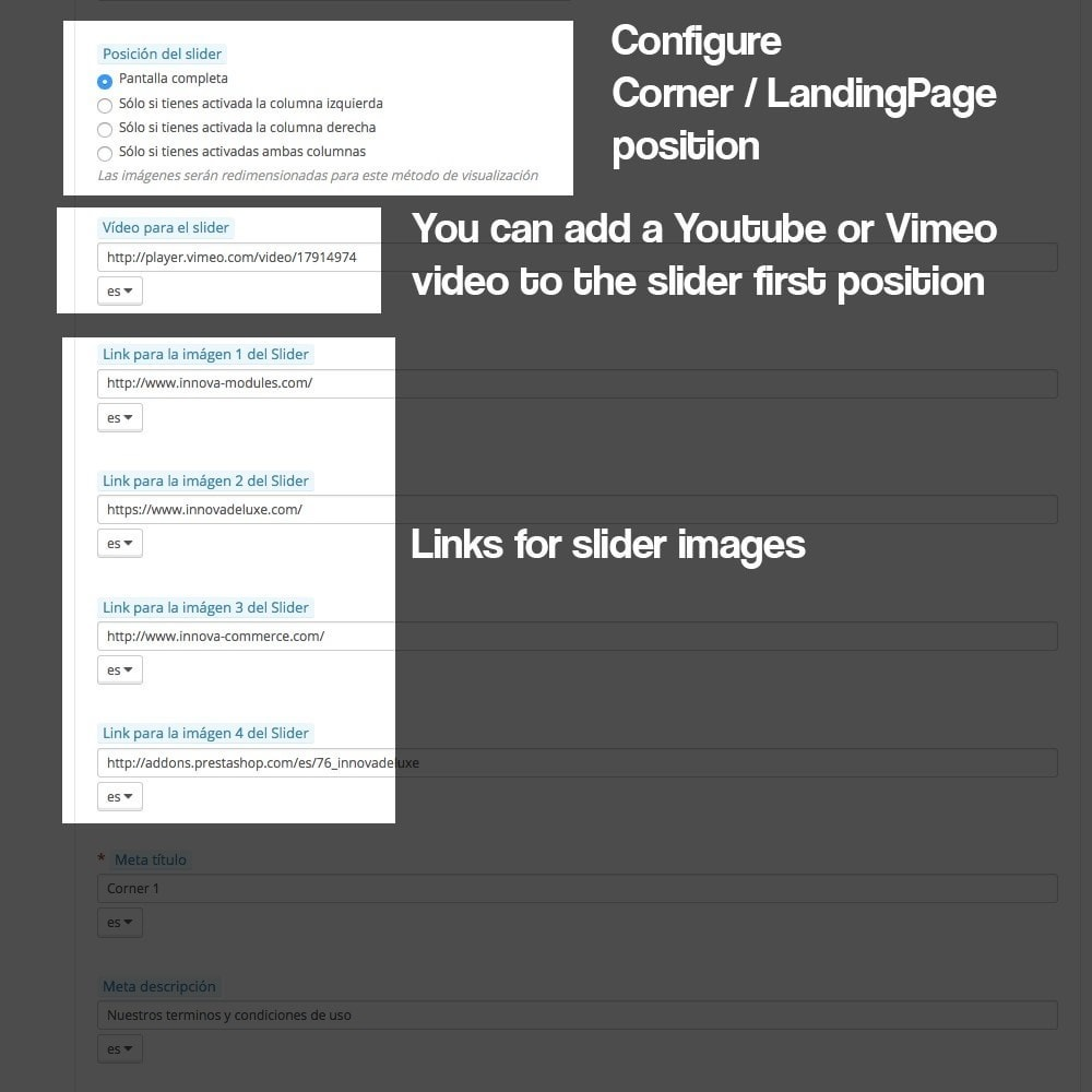 module - SEO - Landing pages, cornes or microsites creator - 9