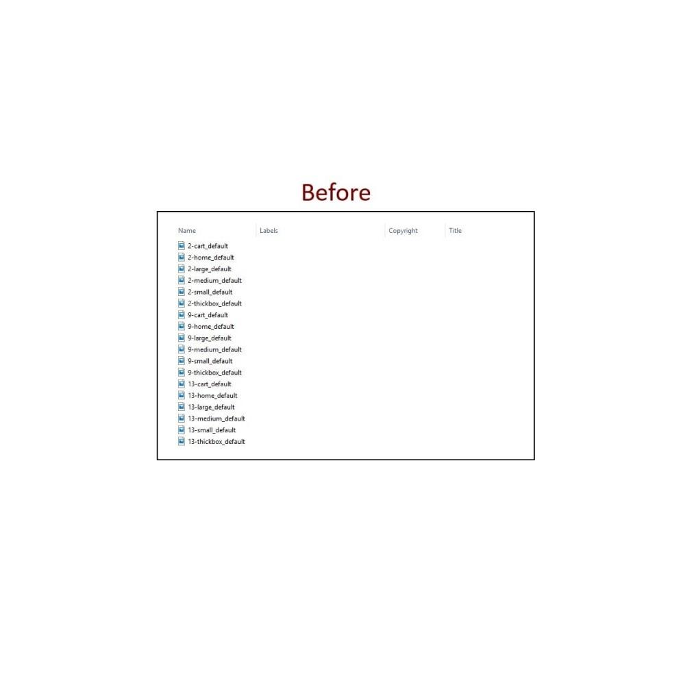 module - SEO (Referenciamento natural) - Image Metadata - 3