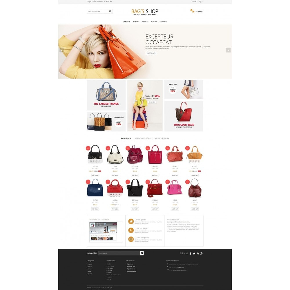 theme - Jewelry & Accessories - Bags shop Multipurpose HTML5 - 2