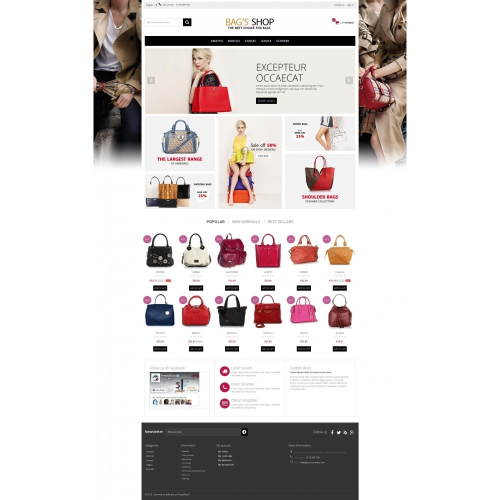 theme - Jewelry & Accessories - Bags shop Multipurpose HTML5 - 4