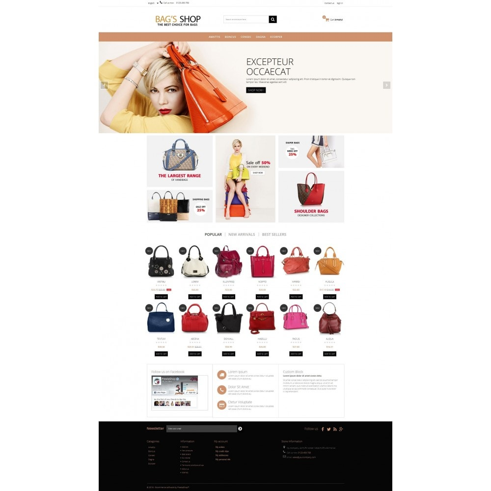 theme - Jewelry & Accessories - Bags shop Multipurpose HTML5 - 5