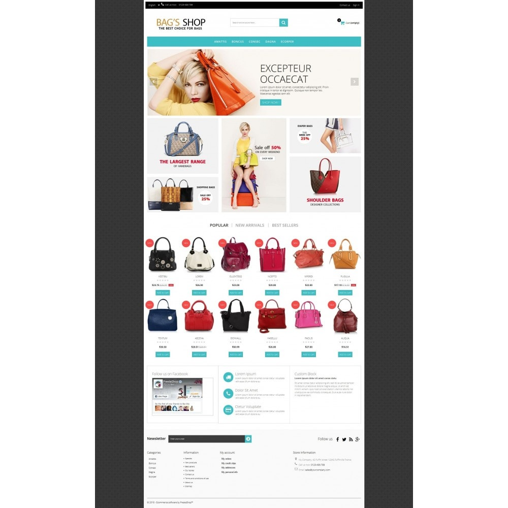 theme - Jewelry & Accessories - Bags shop Multipurpose HTML5 - 6
