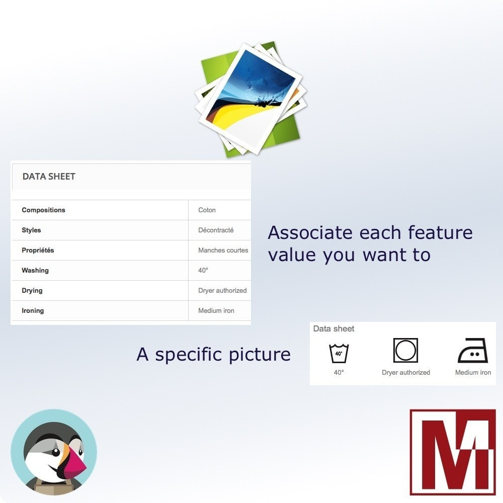 module - Badges & Logos - Associate images with the characteristics - 1