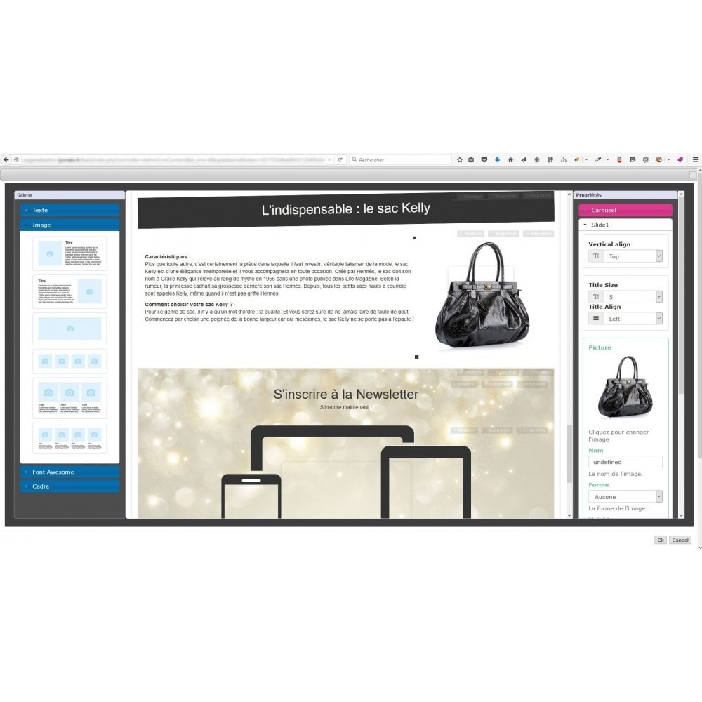module - Personalizzazione pagine - Responsive Page Web Editor - 5