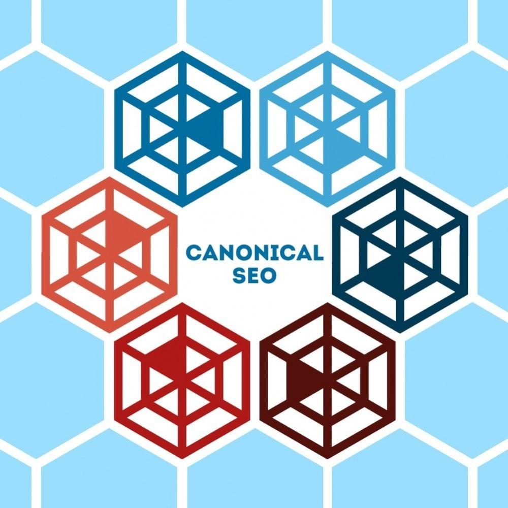module - URL y Redirecciones - Canonical SEO - 1