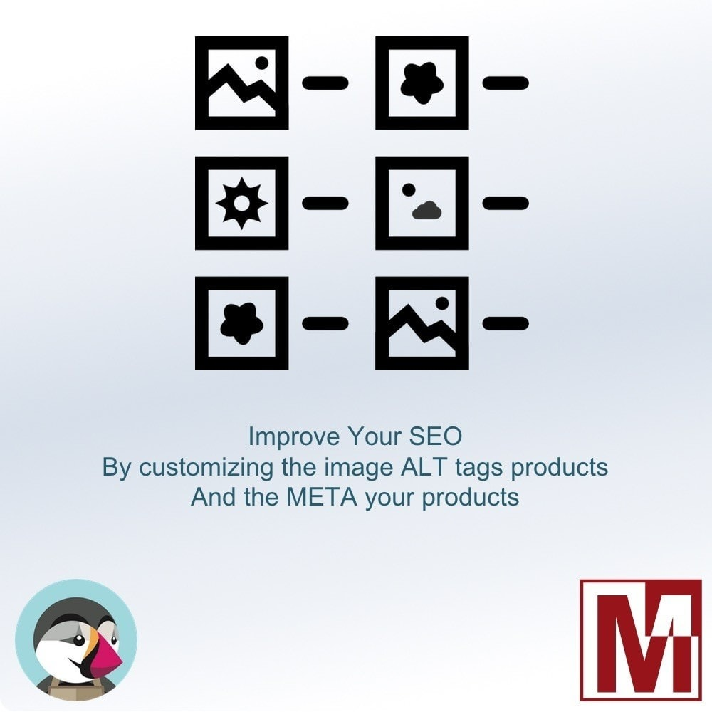 module - SEO (Referenciamento natural) - Manage the ALT tag of your images and meta products - 1