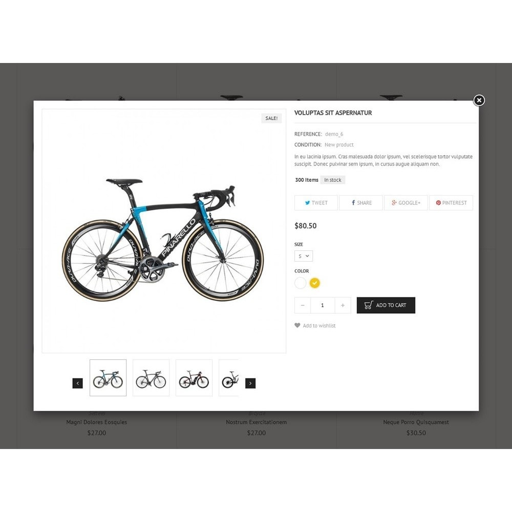 theme - Sports, Activities & Travel - Sport Bicycle Store - 7