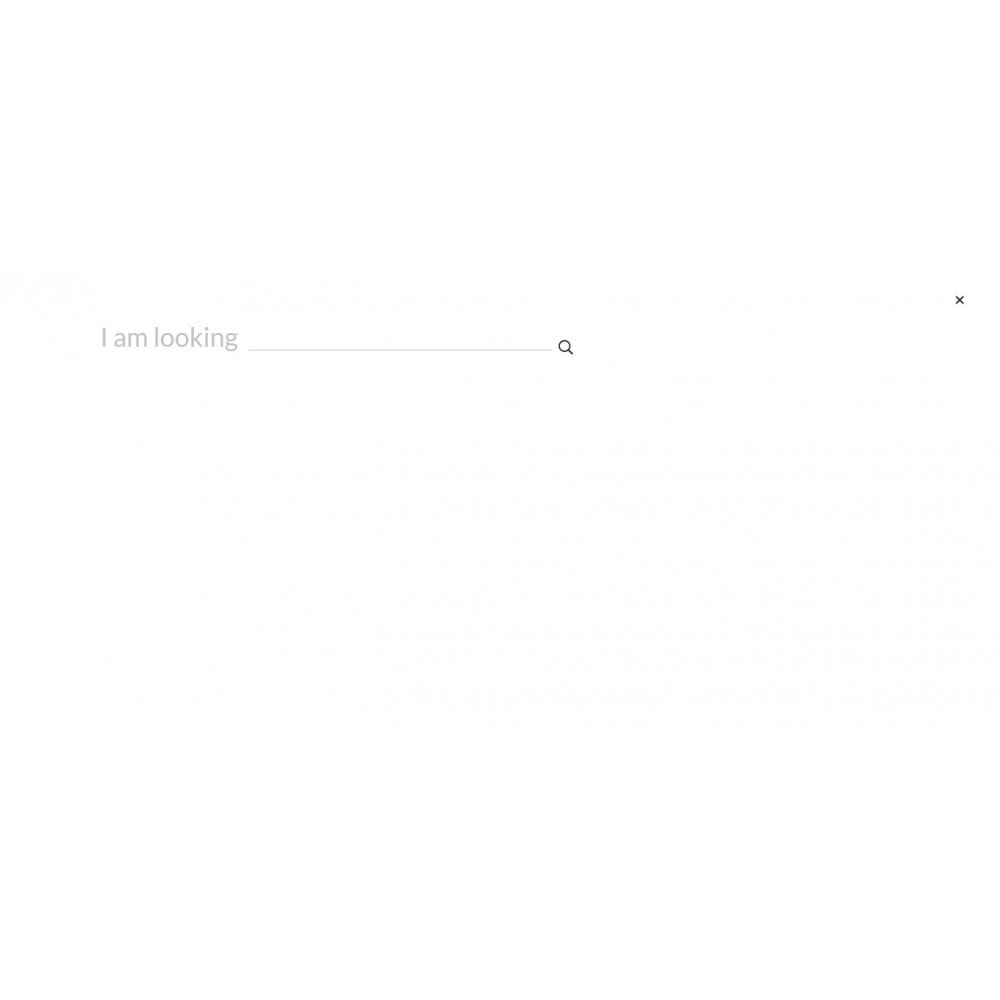 theme - Lingerie & Erwachsene - Long Love Sex Shop - 5