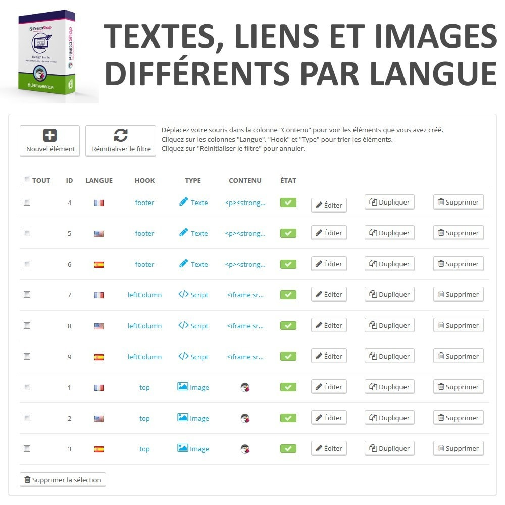 module - Personnalisation de Page - Design Facile - Ajouter Images, Textes et Scripts - 6