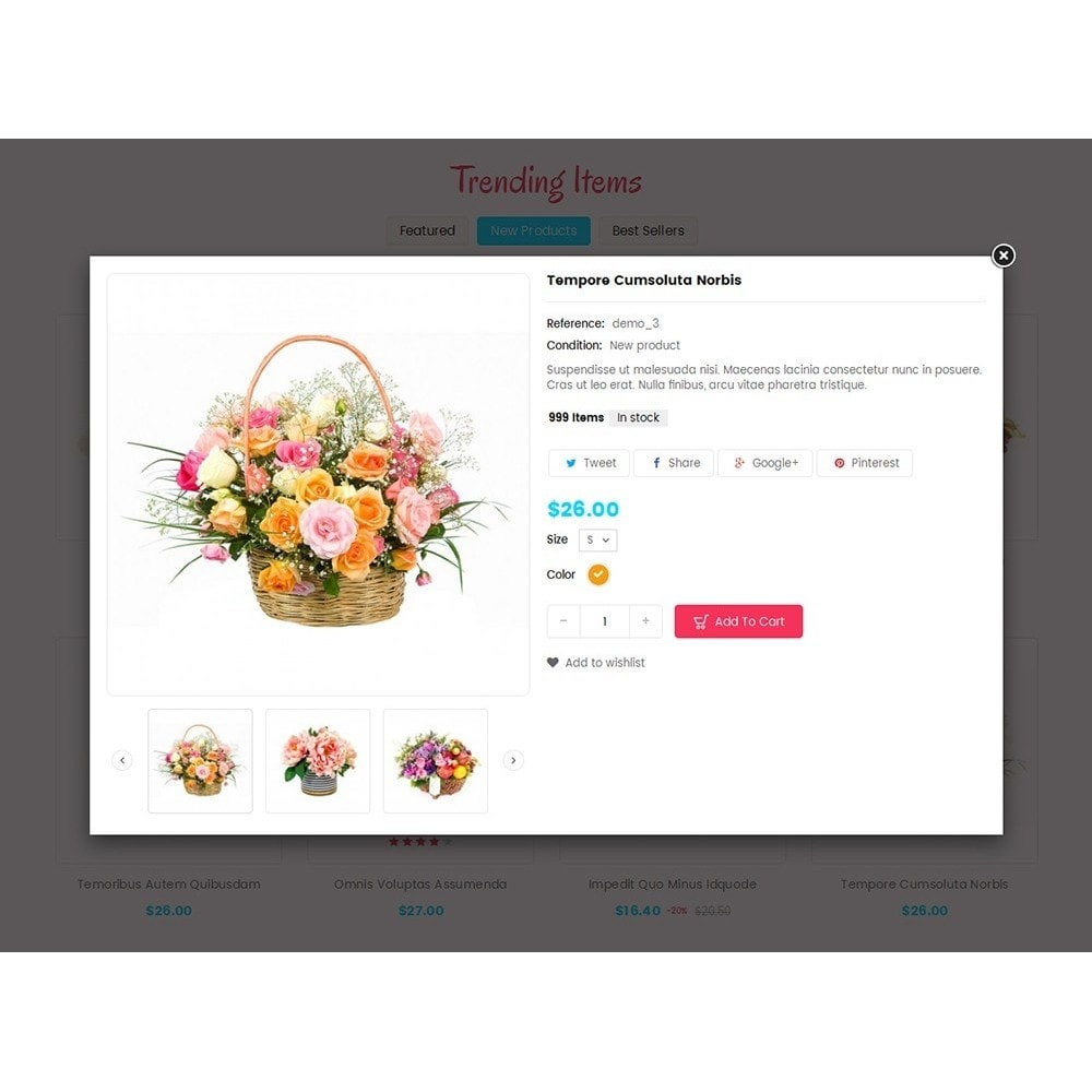theme - Gifts, Flowers & Celebrations - Bloom Flower Store - 7