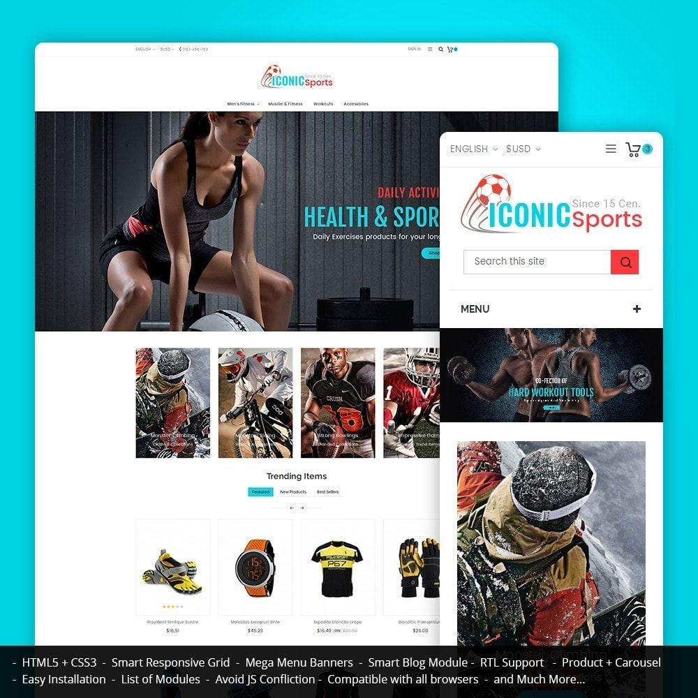 theme - Sport, Loisirs & Voyage - Iconic Sports Store - 1