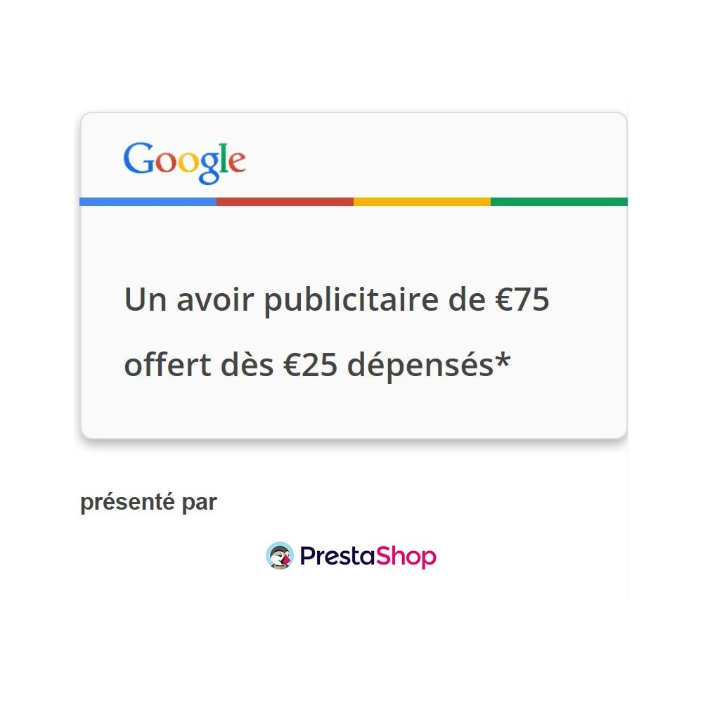 module - Référencement payant (SEA SEM) & Affiliation - Google AdWords - 4