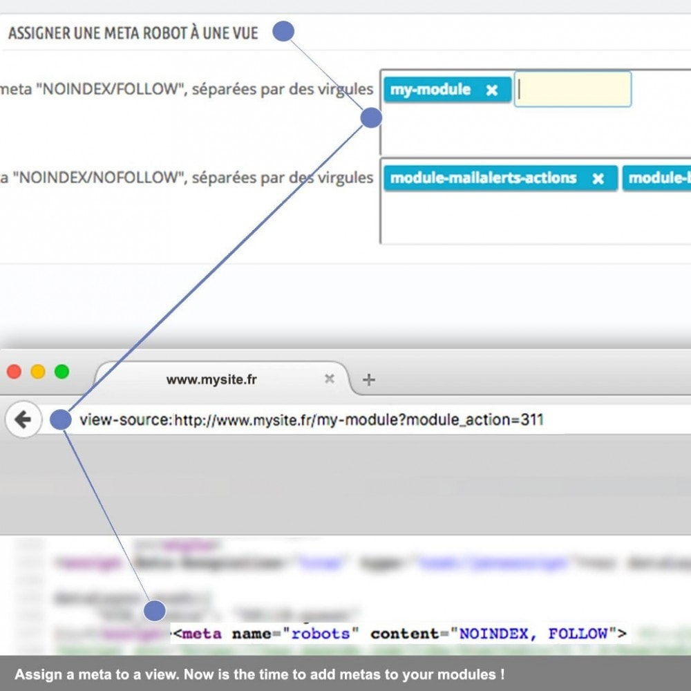 module - SEO (Referenciamento natural) - SEO robots and canonical meta tag extended - 1