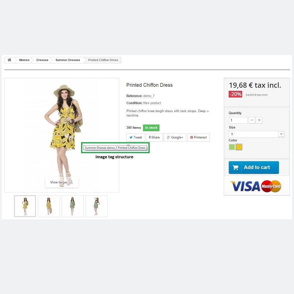 bundle - De aanbiedingen van dit moment: bespaar geld! - SEO Expert + SEO Images (Pack) - 2