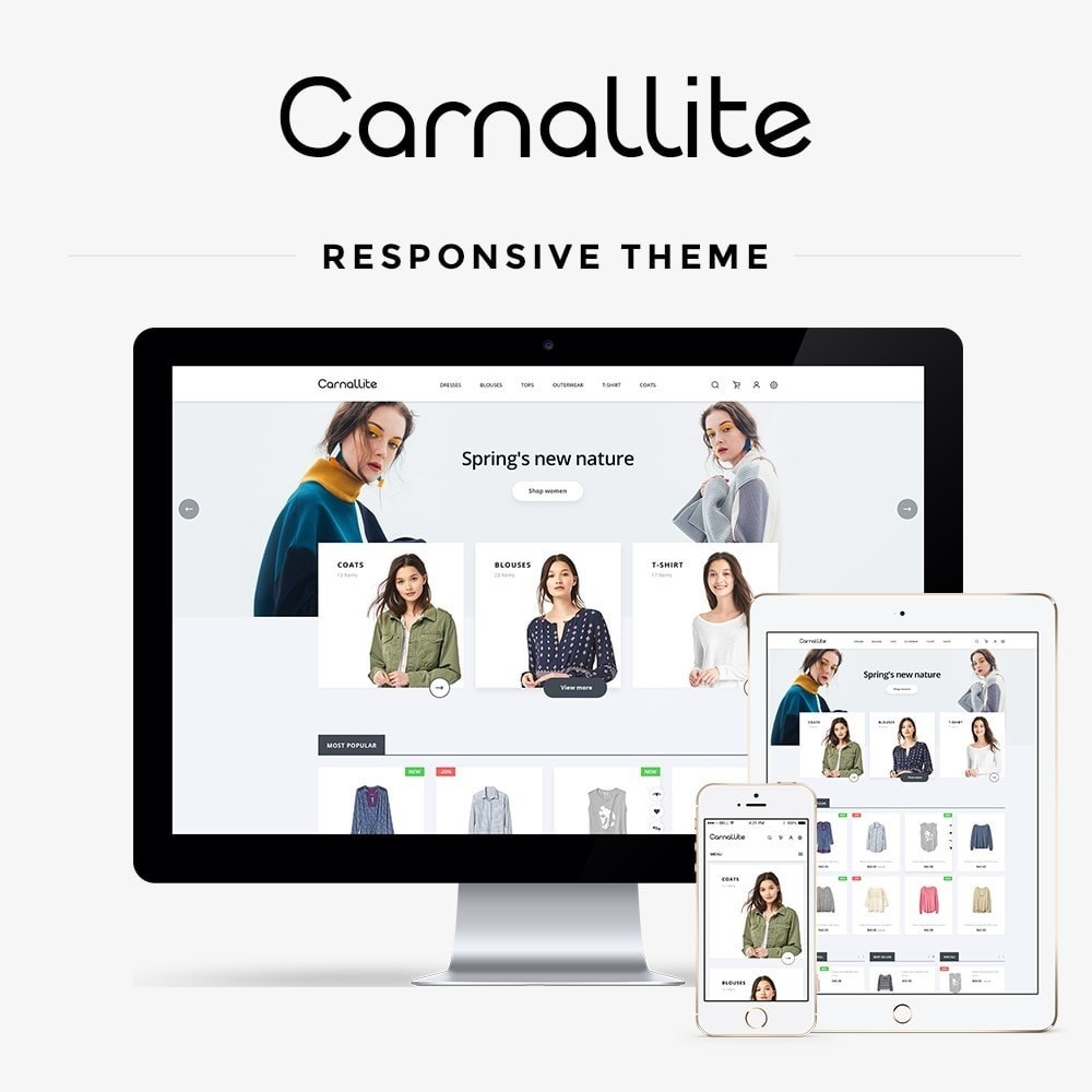 theme - Fashion & Shoes - Carnalitte Fashion Store - 1