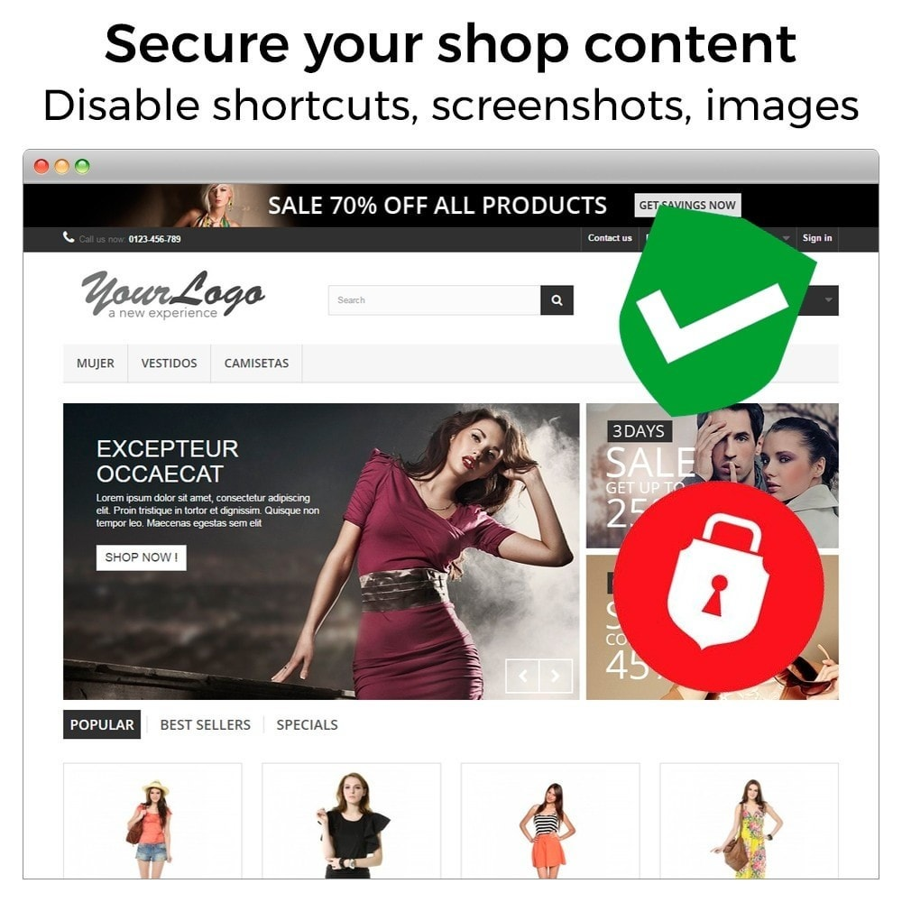 module - Безопасности и доступа - Content Protection - Secure your shop - 2