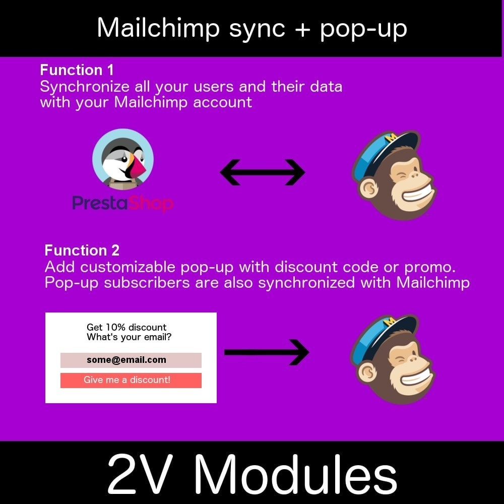 module - Newsletter & SMS - Easy Mailchimp integration - 2