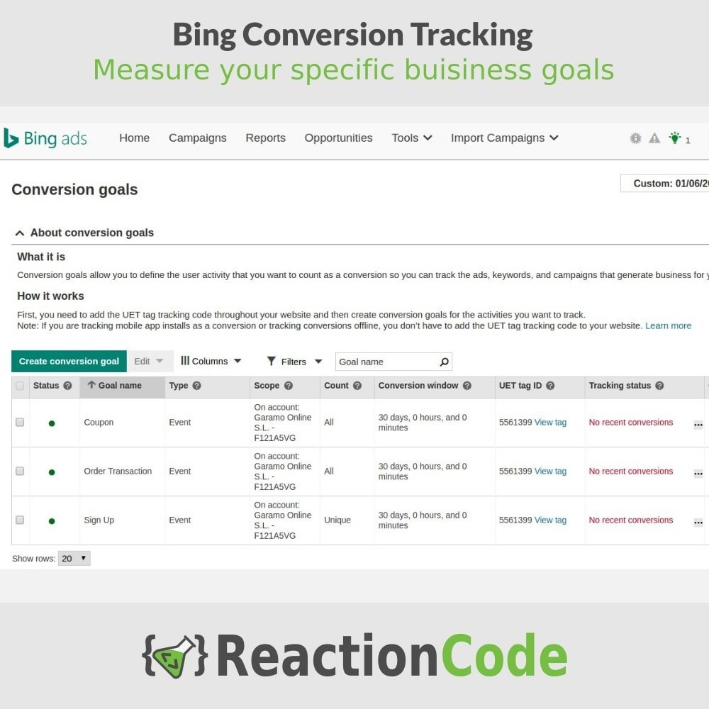 module - Analyses & Statistiques - Bing Conversion Tracking - 6