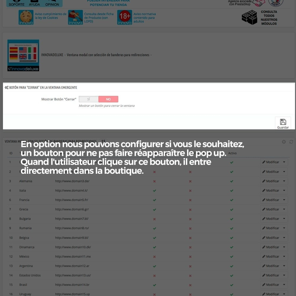 module - URL & Redirections - Pop up avec drapeaux (redirection vers d'autres sites) - 3