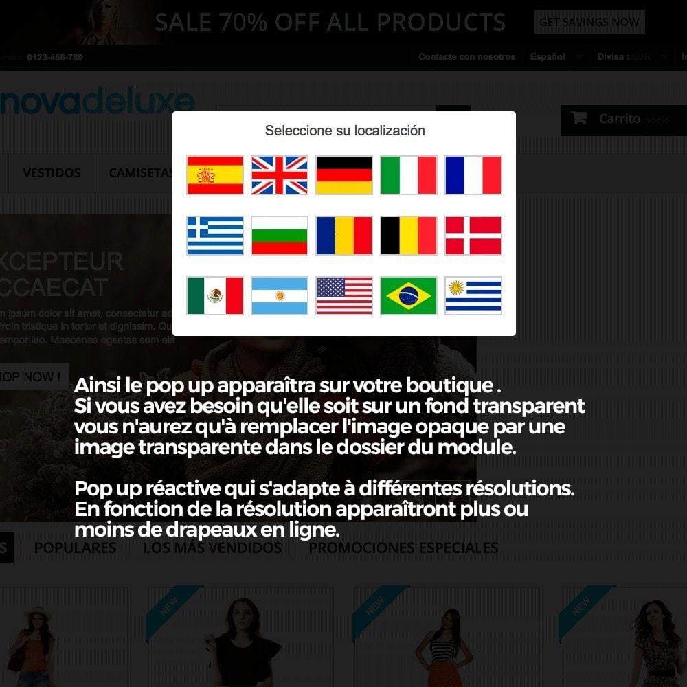 module - URL & Redirections - Pop up avec drapeaux (redirection vers d'autres sites) - 7