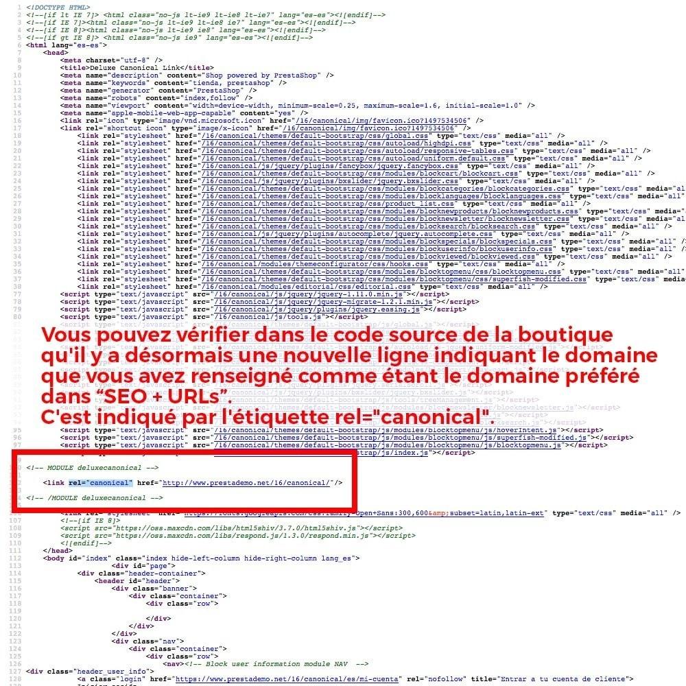 module - URL & Redirections - Information sur redirection d'URL canonique pour Google - 4