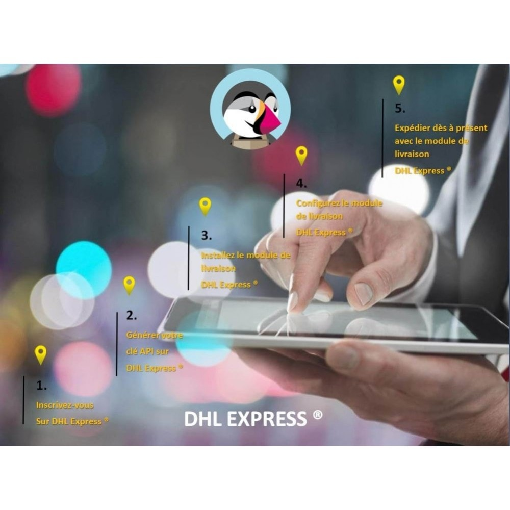 module - Rastreamento da entrega - DHL EXPRESS ® Official - 2