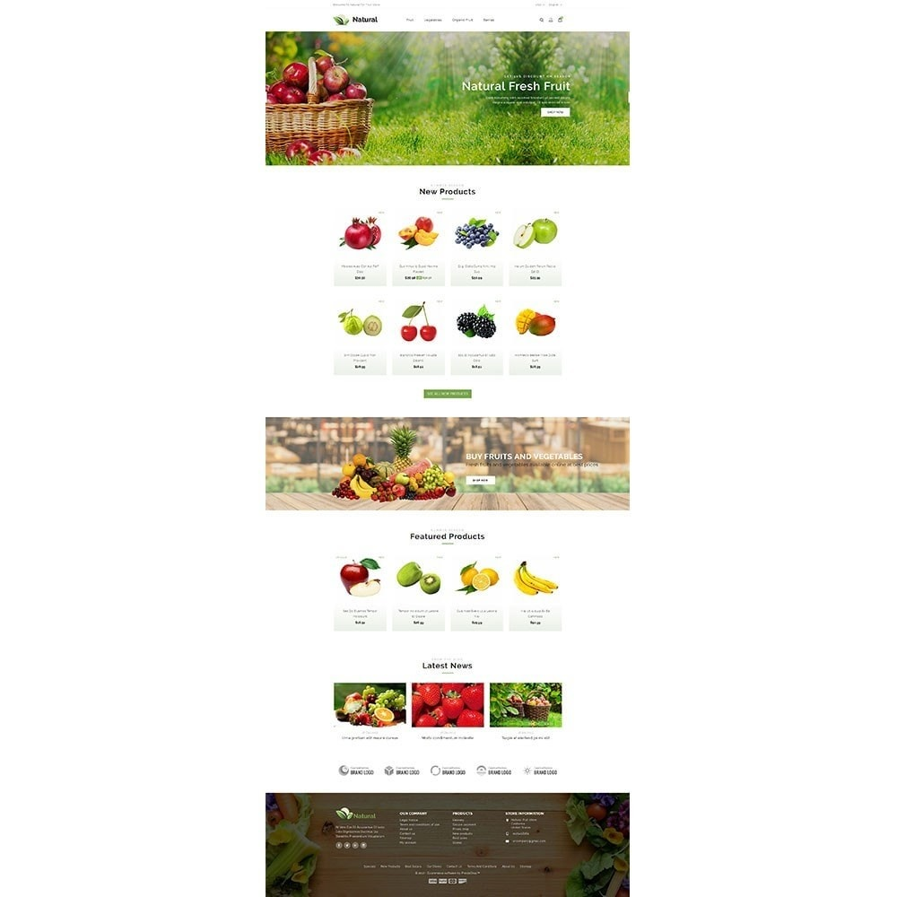 theme - Alimentation & Restauration - Natural Fruit Store - 2