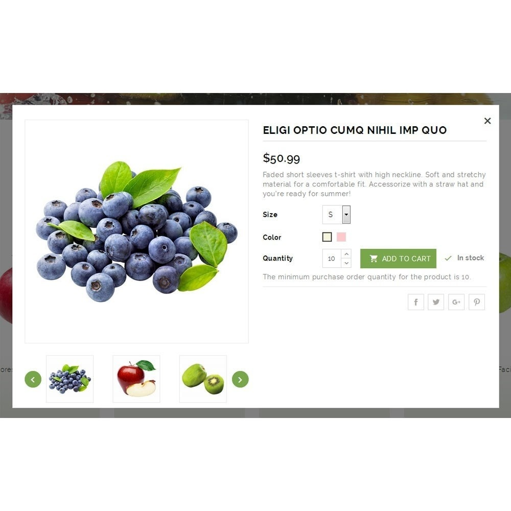 theme - Alimentation & Restauration - Natural Fruit Store - 6
