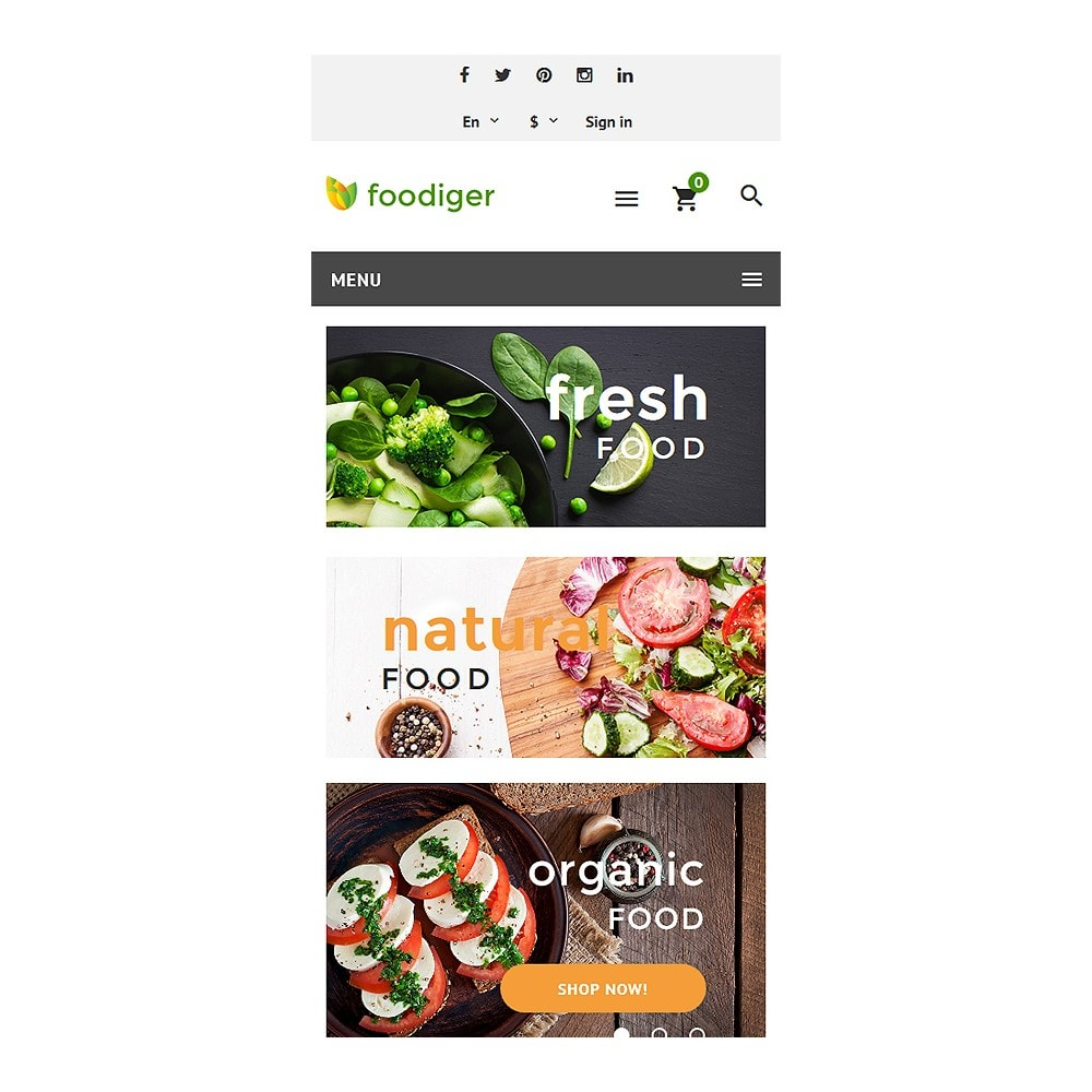 theme - Alimentation & Restauration - Foodiger - Grocery Store - 8