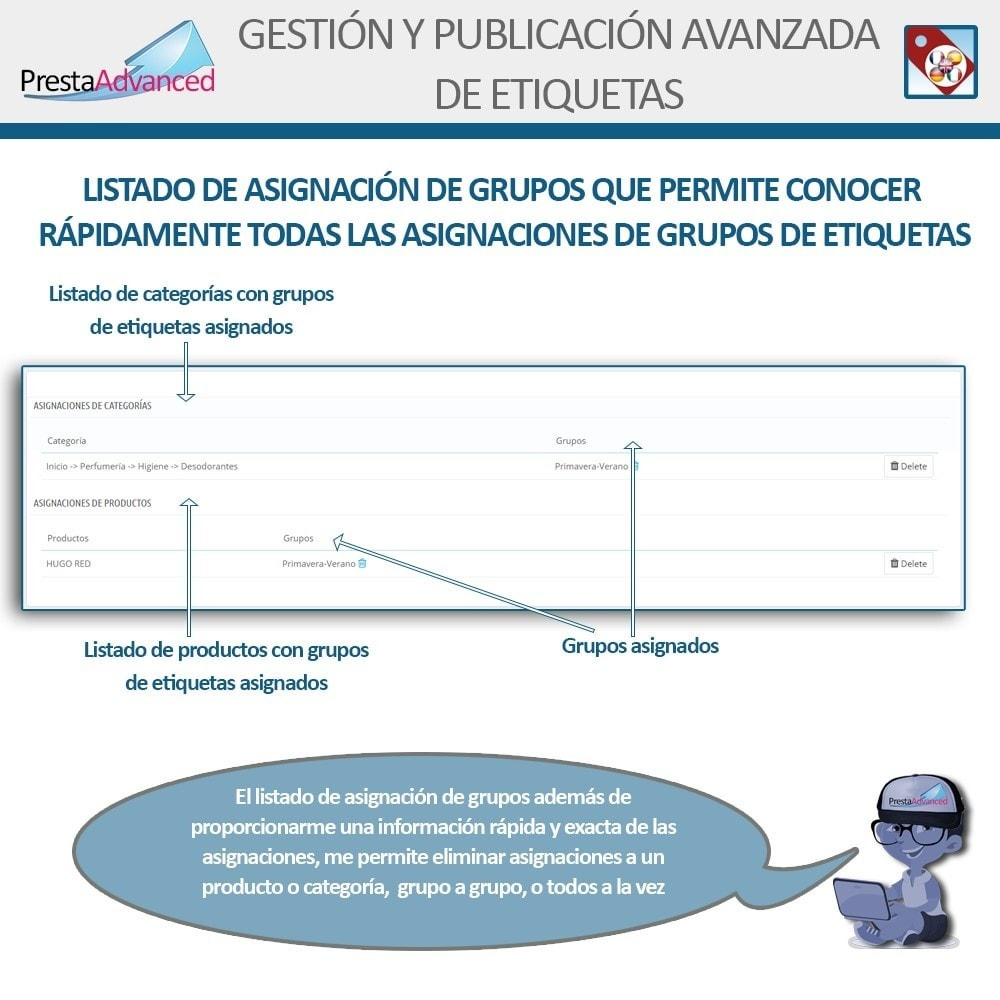module - Etiquetas y Logos - Etiquetas: Gestión Avanzada y Publicación - 8