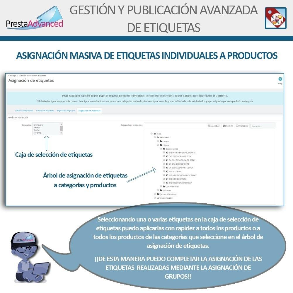 module - Etiquetas y Logos - Etiquetas: Gestión Avanzada y Publicación - 9