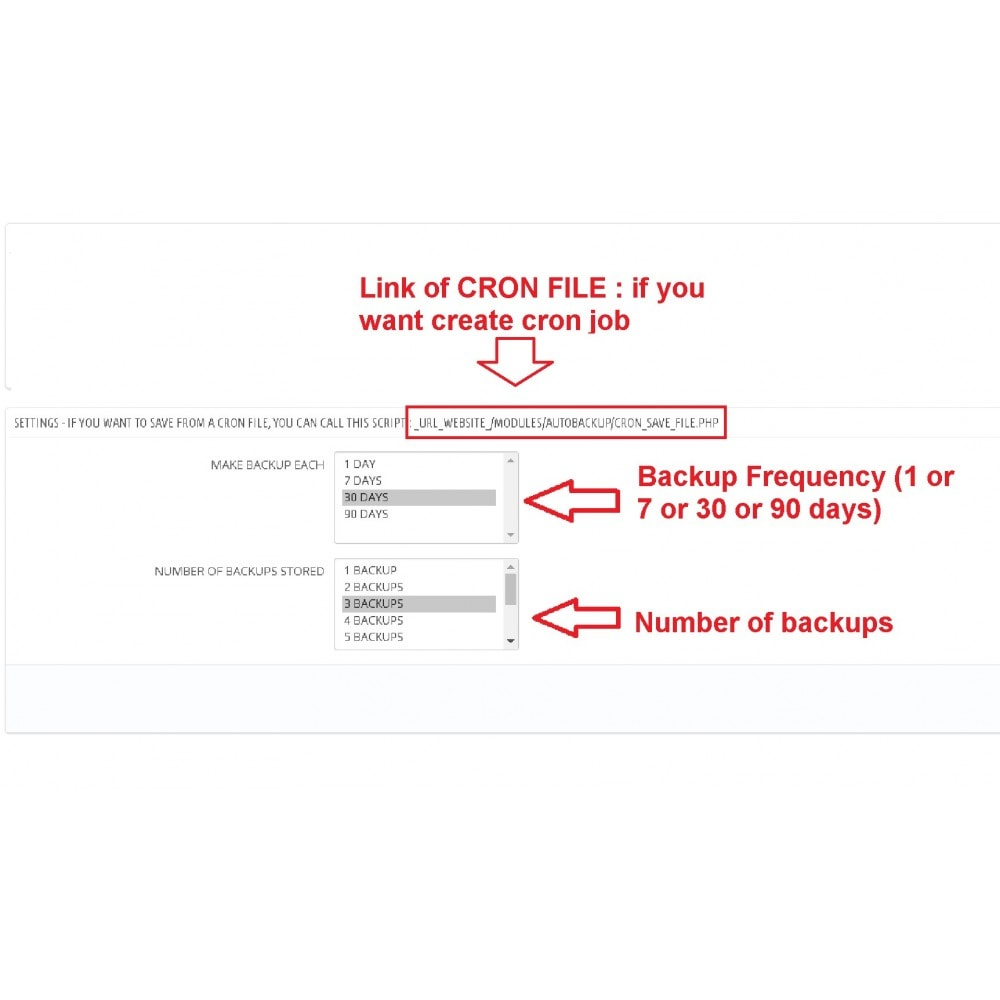 module - Миграции и сохранения данных - Auto Backup - 3