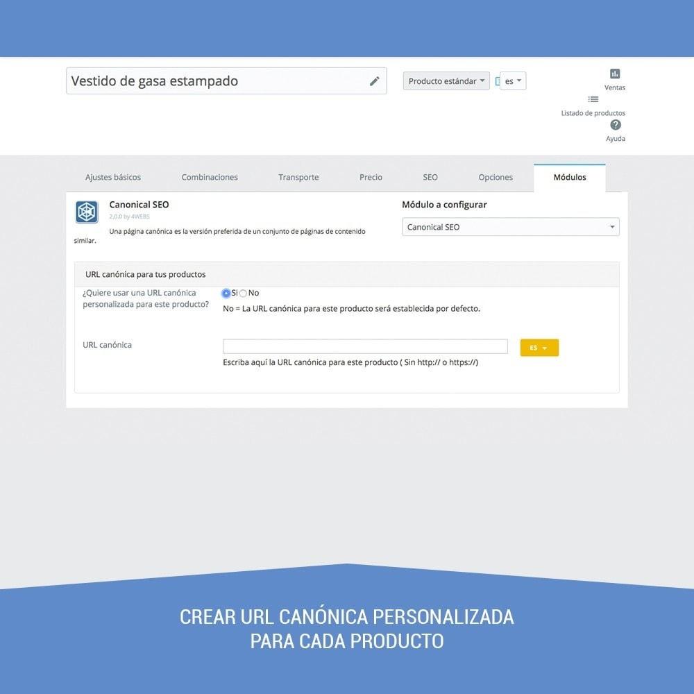 module - URL y Redirecciones - Canonical SEO - 3
