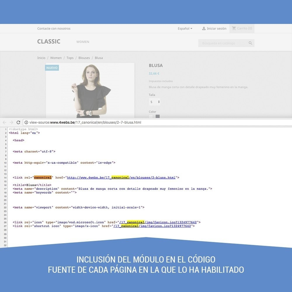 module - URL y Redirecciones - Canonical SEO - 5