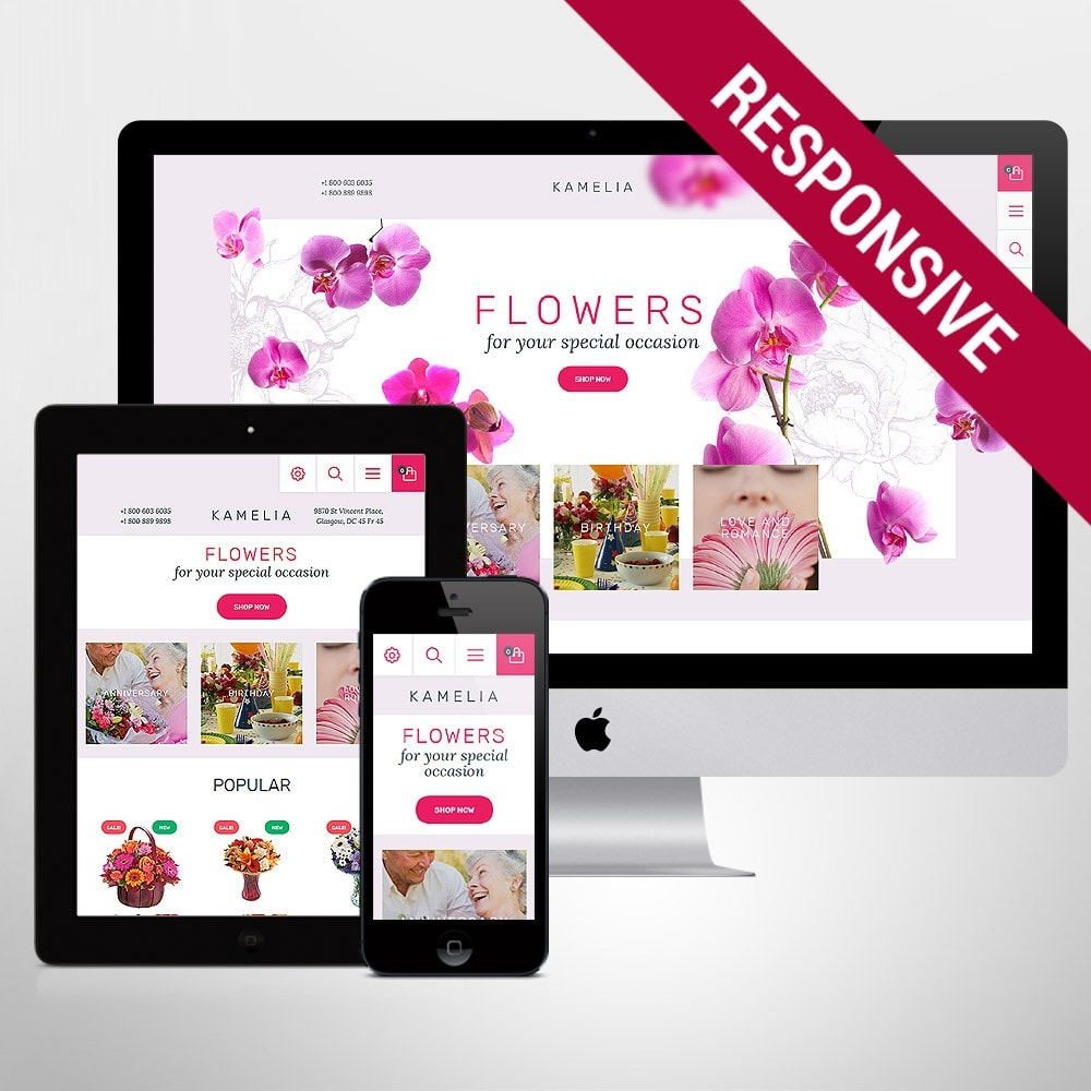 theme - Geschenke, Blumen & Feiern - Kamelia - 1