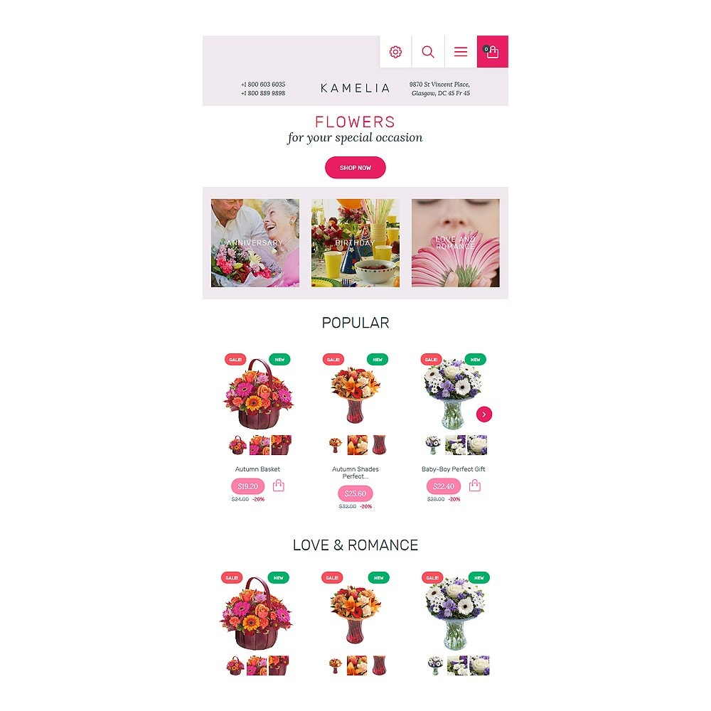 theme - Geschenke, Blumen & Feiern - Kamelia - 7