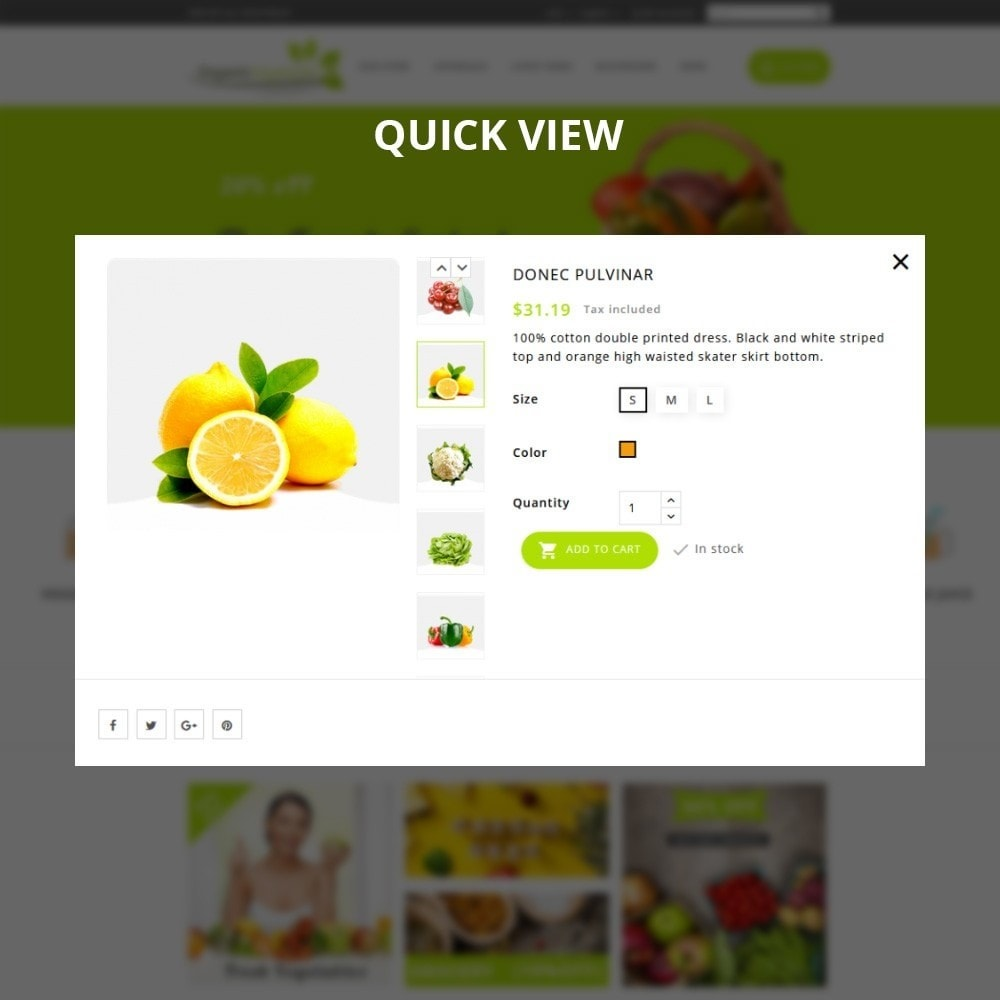theme - Gastronomía y Restauración - Organic Vegetable Store - 11