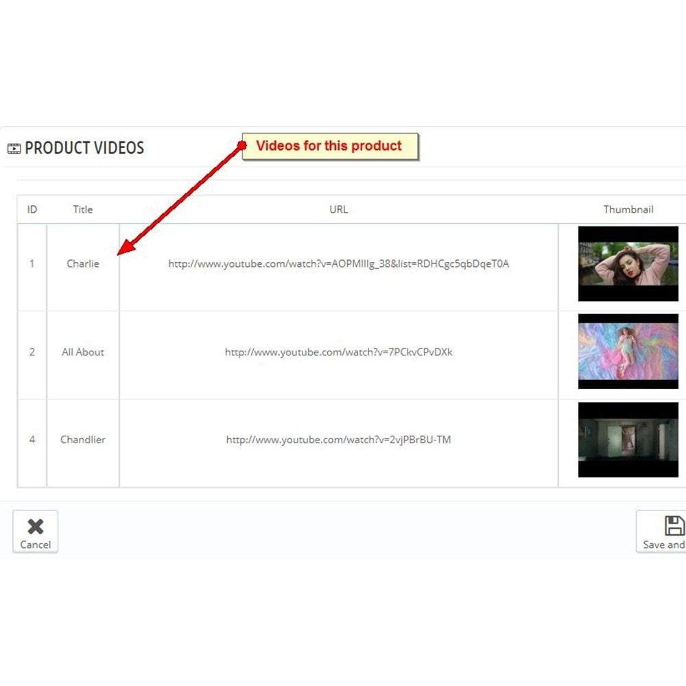 module - Videos & Musik - Youtube Produktvideos - 8