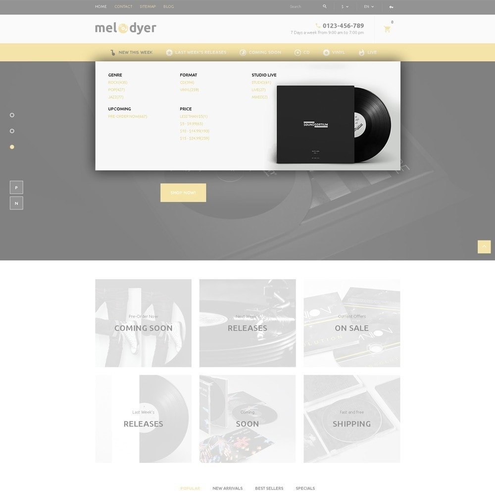 theme - Electronique & High Tech - Melodyer - Magasin d'audio adaptatif - 6