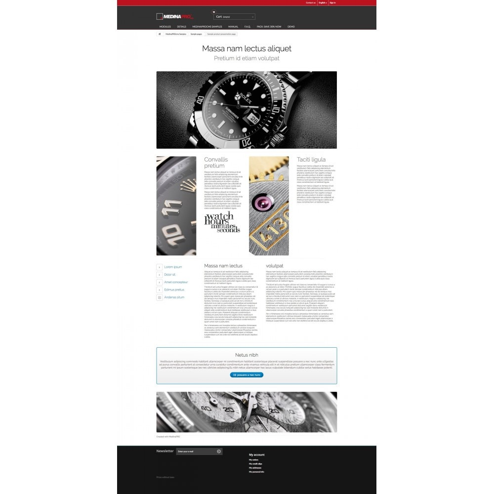 module - Personalización de la página - MedinaPro diseñador de páginas 10 en 1 - 7