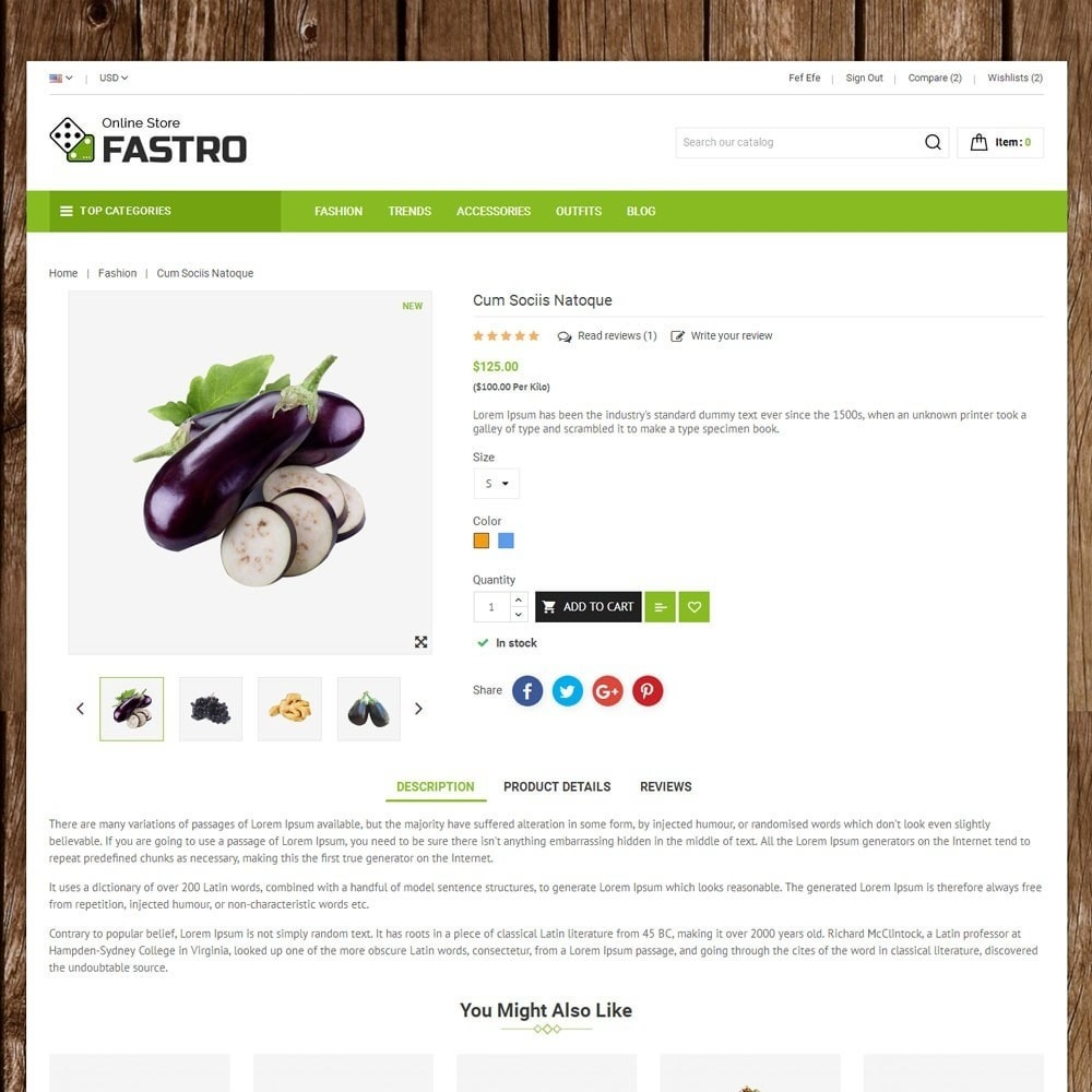 theme - Alimentation & Restauration - Fastro Grocery Store - 5