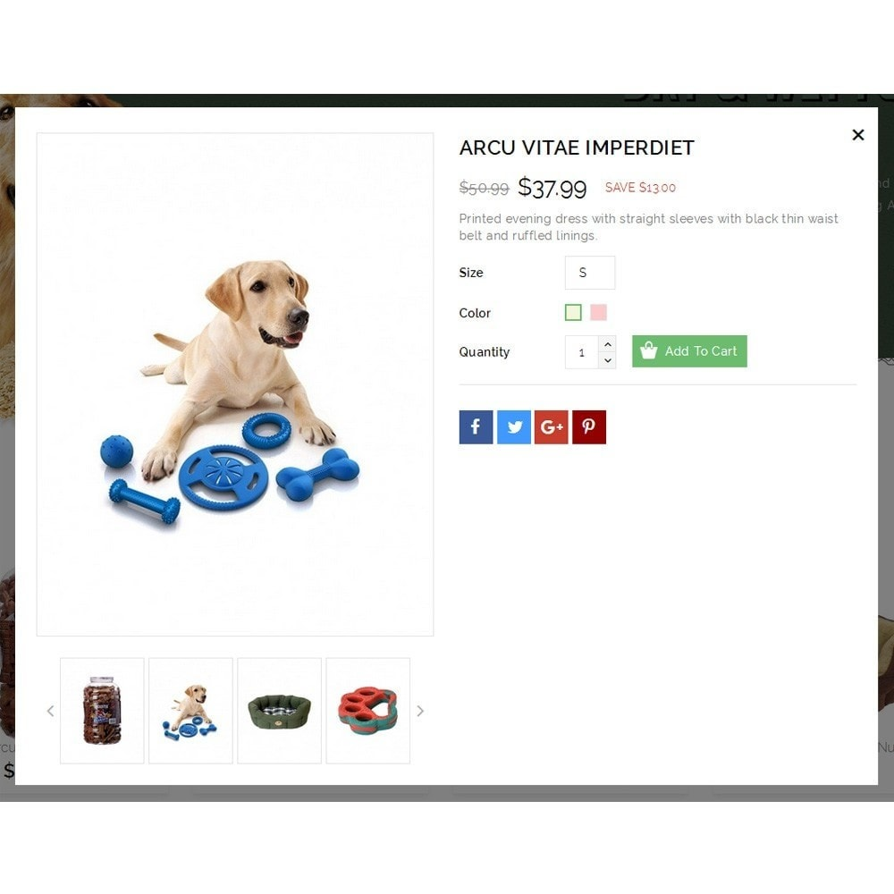 theme - Tier - Dearpets Pet Store - 7