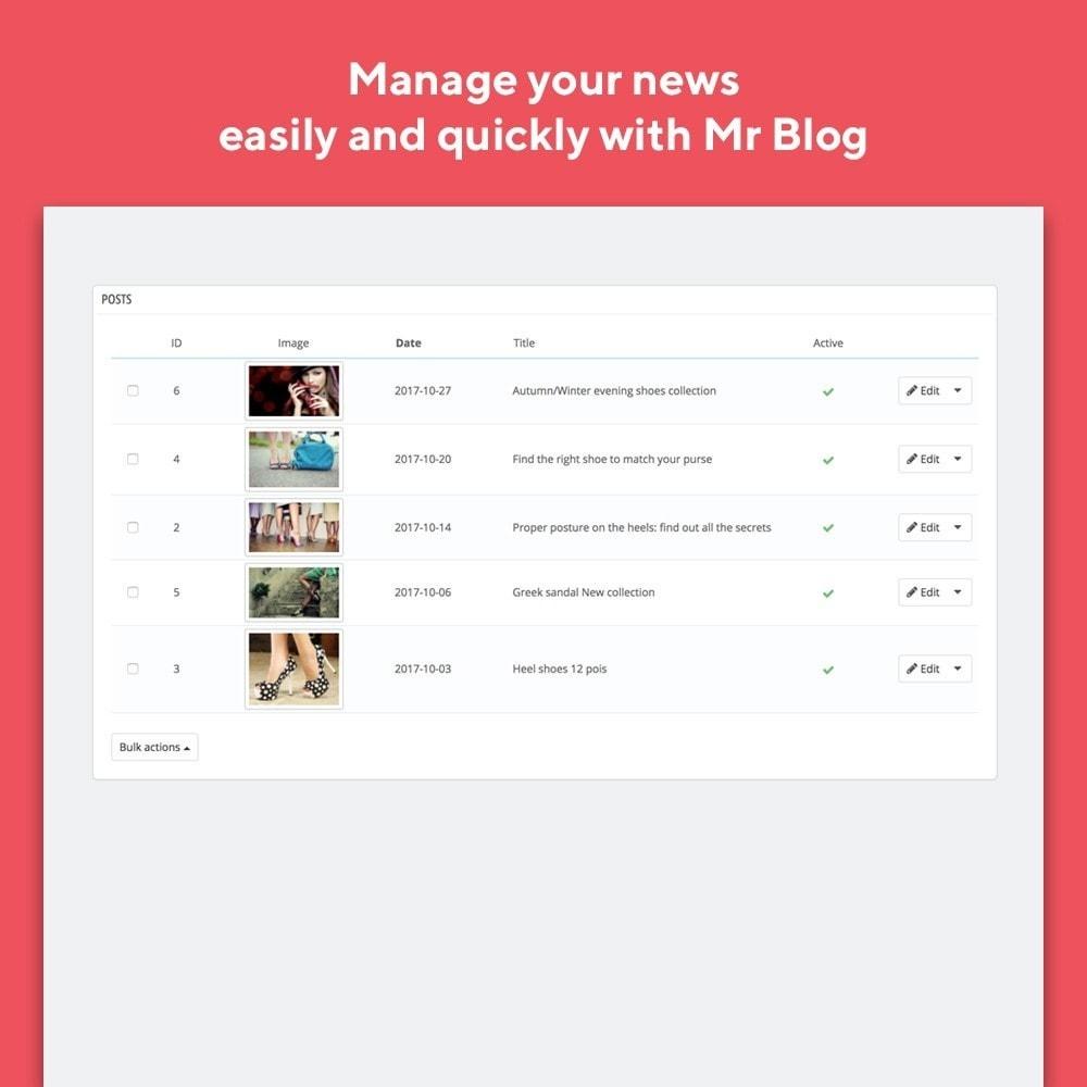 module - Блог, форумов и новостей - Mr Blog - 5