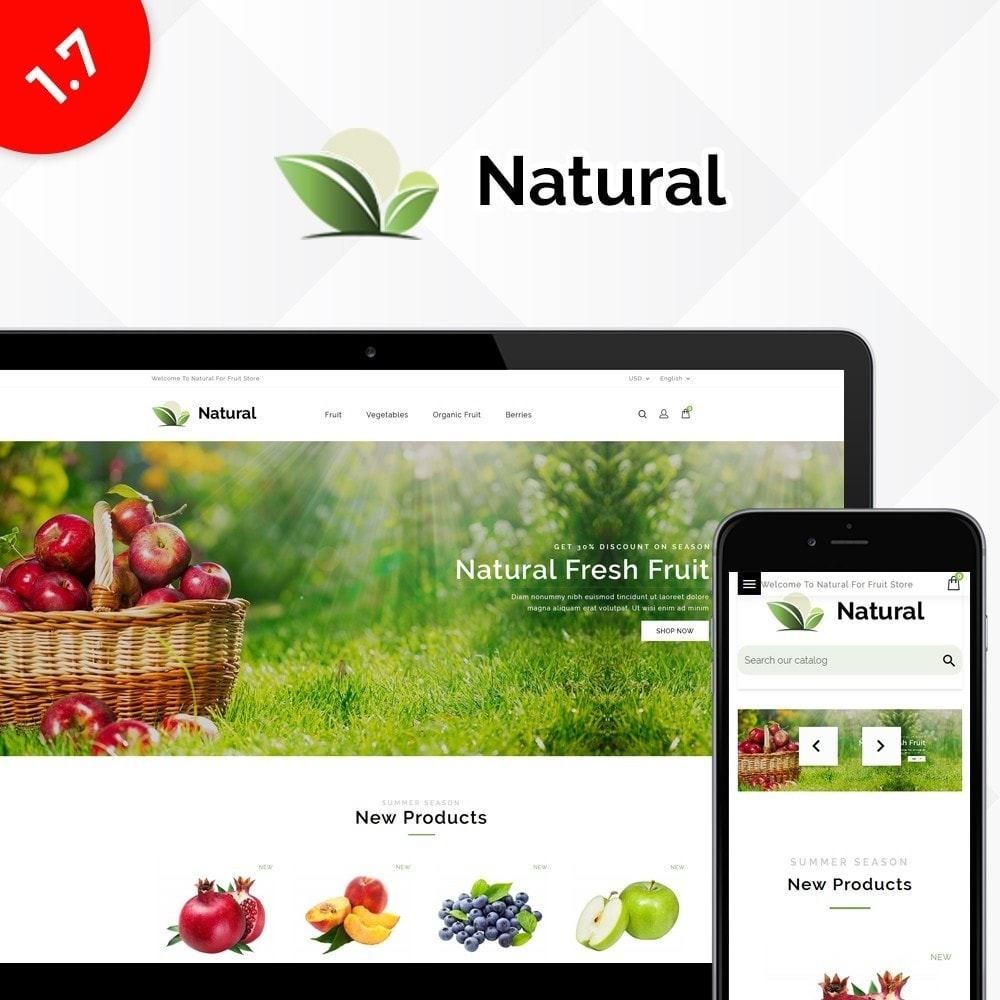 theme - Alimentation & Restauration - Natural Fruit Store - 1