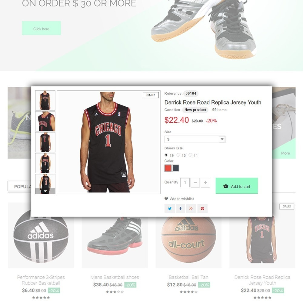 theme - Спорт и Путешествия - Basketball Store - 5