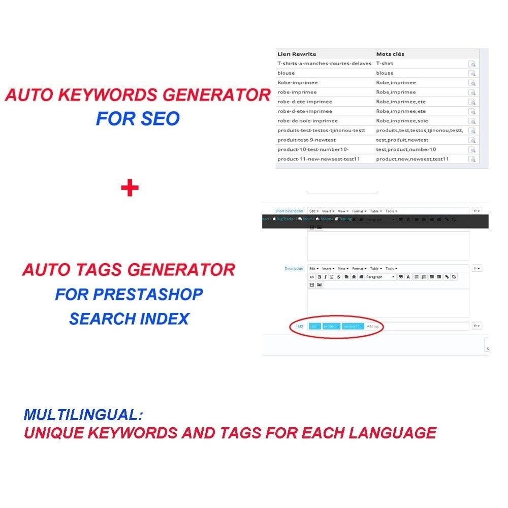 module - SEO (Indicizzazione naturale) - AUTO KEYWORDS GENERATOR - 1
